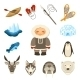 Chukchi Icons Set - GraphicRiver Item for Sale