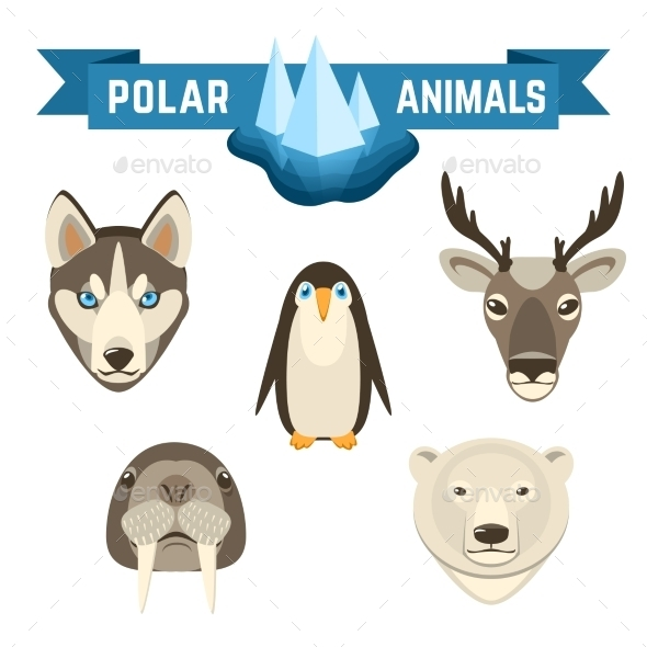 GraphicRiver Polar Animals Set 10906822