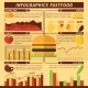 Fast Food Infographics - GraphicRiver Item for Sale