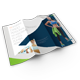 Fitness 3-Fold Brochure - GraphicRiver Item for Sale