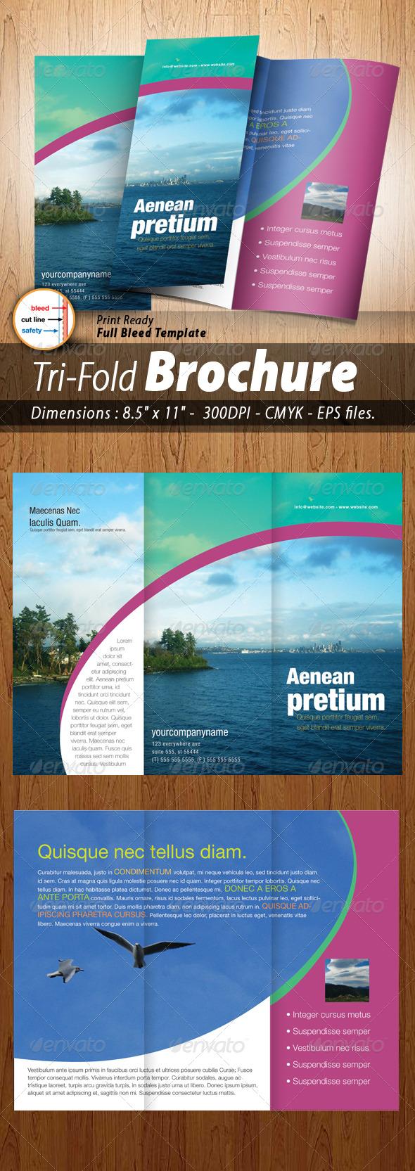 Aenean Tri-fold Brochure  - Corporate Brochures
