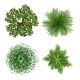 Top View of Trees - GraphicRiver Item for Sale