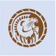 Lion Logo - GraphicRiver Item for Sale