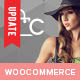 Celine - Responsive Shopping WordPress Theme - ThemeForest Item for Sale