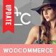 Celine - Responsive Shopping WordPress Theme - ThemeForest Item for Sale