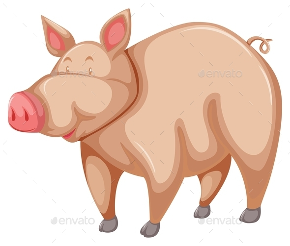 GraphicRiver Pig 10916599