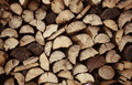 An old vintage firewood logs in a pile - PhotoDune Item for Sale
