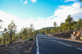 Road on Cloudy Day in El Teide National Park - PhotoDune Item for Sale