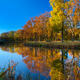 Landscape of river and trees in sunny day - PhotoDune Item for Sale