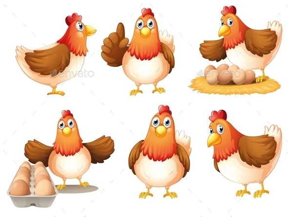 GraphicRiver Chickens with Eggs 10923953