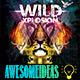 Wild Xplosion FLyer - GraphicRiver Item for Sale