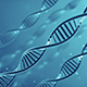 DNA Strands (2-Pack) - VideoHive Item for Sale