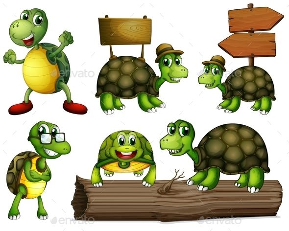 GraphicRiver Turtles 10925600
