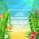 Tropical Plants Background - GraphicRiver Item for Sale
