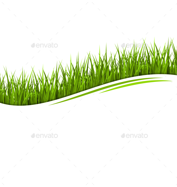 GraphicRiver Green Grass Lawn Wave Isolated on White Background 10928237