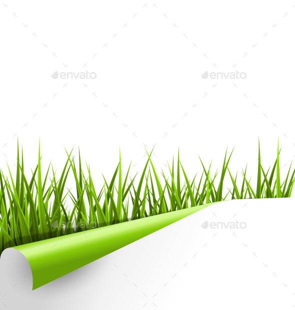 GraphicRiver Green Grass with Wrapped Paper Sheet Isolated 10928366