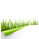 Green Grass with Wrapped Paper Sheet Isolated - GraphicRiver Item for Sale