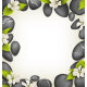 SPA Stones with Cherry White Flowers like Frame - GraphicRiver Item for Sale