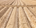 Furrows Abstract - PhotoDune Item for Sale