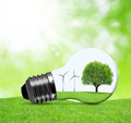 Eco bulb with wind turbines and tree. - PhotoDune Item for Sale