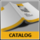 Business Catalog Template - GraphicRiver Item for Sale