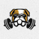 Bulldog Logo Design - GraphicRiver Item for Sale
