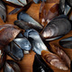 Shells of mussels on kitchen board - PhotoDune Item for Sale