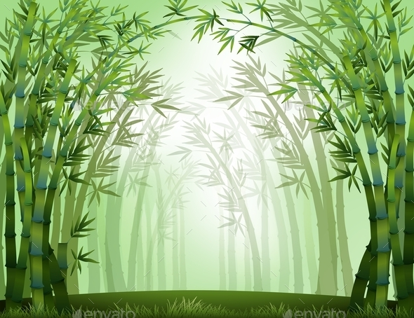 GraphicRiver Bamboo 10935653
