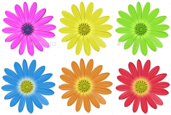 GraphicRiver Colourful Flowers 10935990