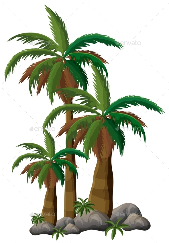 GraphicRiver Palm Trees 10936381