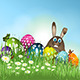 Easter Bunny Background - GraphicRiver Item for Sale