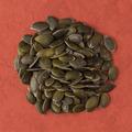 Circle of pumpkin seeds - PhotoDune Item for Sale