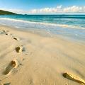 Footprints on sand at beautiful beach - PhotoDune Item for Sale