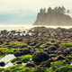 Olympic coast - PhotoDune Item for Sale