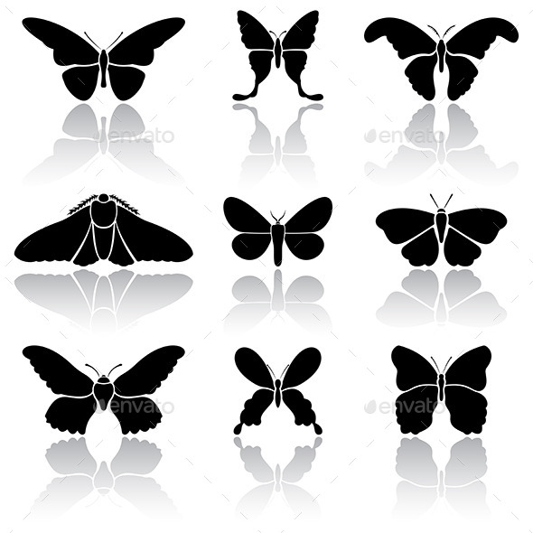 GraphicRiver Butterflies 10943508