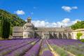 Famous Abbey of Senanque - PhotoDune Item for Sale