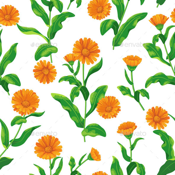 GraphicRiver Calendula Bunches Pattern 10945145