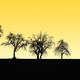 fruit tree silhouettes - PhotoDune Item for Sale