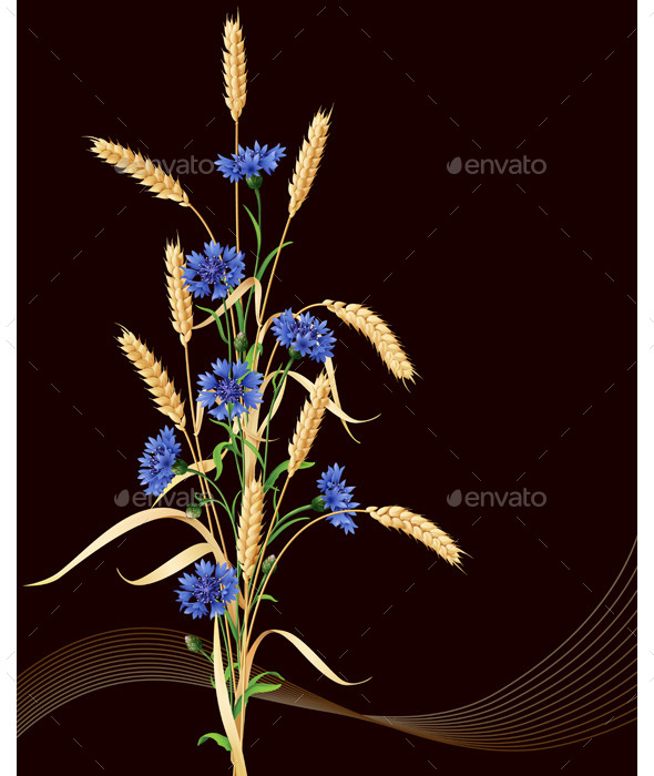 GraphicRiver Cornflowers and Wheat Ears Bunch on Black 10945294