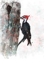 Pileated Woodpecker Watercolor - PhotoDune Item for Sale