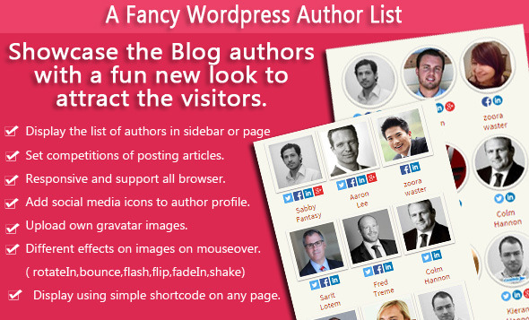 A Fancy Wordpress Author List - CodeCanyon Item for Sale
