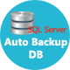 Auto Backup DB for SQL Server