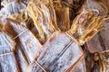 dried squid - PhotoDune Item for Sale