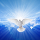 Holy Spirit came down like dove - PhotoDune Item for Sale