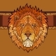 Lion Head with Ethnic Ornament - GraphicRiver Item for Sale