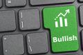 Bullish key on keyboard - PhotoDune Item for Sale