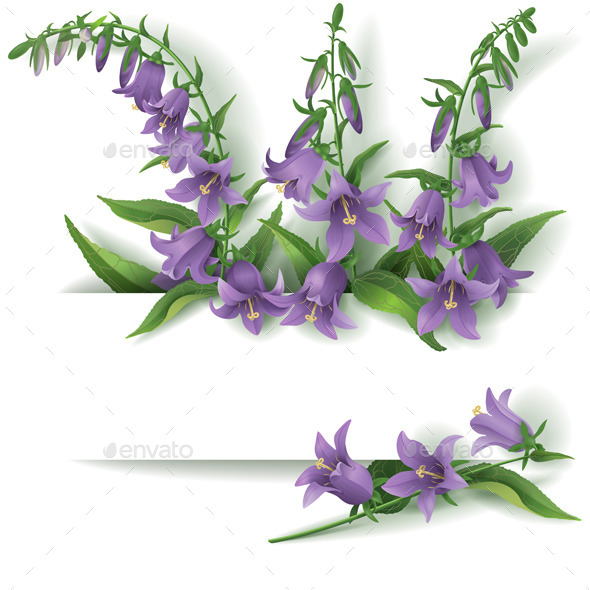 GraphicRiver Bluebell Flowers 10962061
