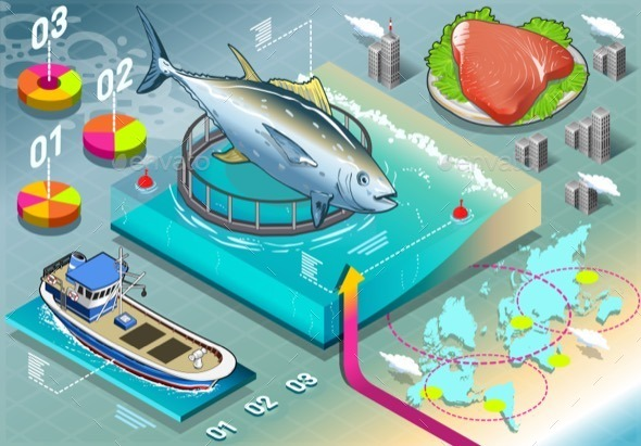 GraphicRiver Isometric Infographic of Tuna Breeding 10962827
