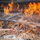 wood BBQ barbeque preparation - PhotoDune Item for Sale