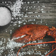 Cooked lobster claw with sea salt on wood - PhotoDune Item for Sale